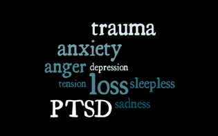 EMDR, PTSD, Anxiety, Depression, Insomnia, Sadness, Anger